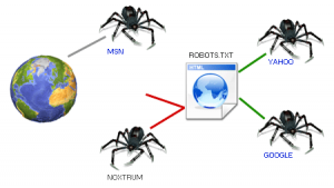 What is Robots.txt File and How to Set it up?